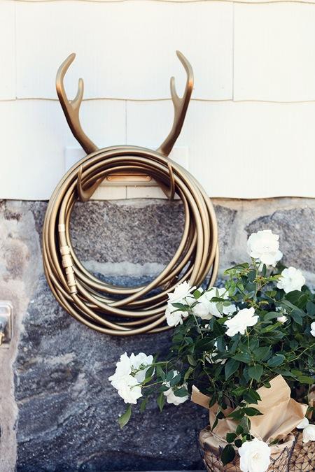 bild026-golddigger_reindeer.jpg