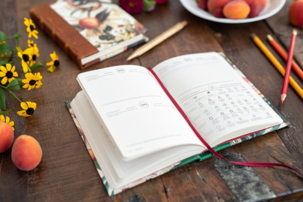 diary_perpetual_birds_and_fruits3.jpg