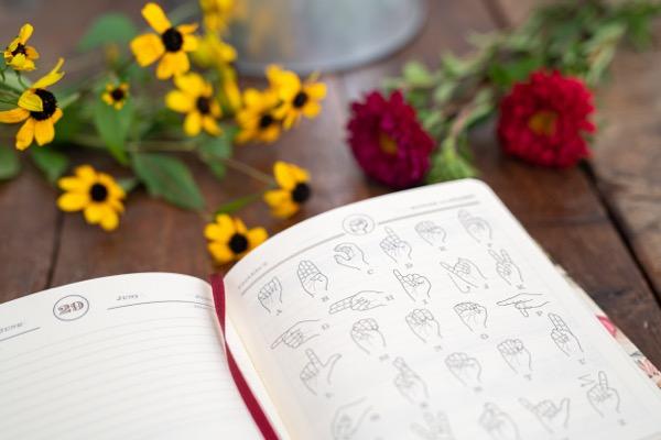 diary_perpetual_macro13.jpg