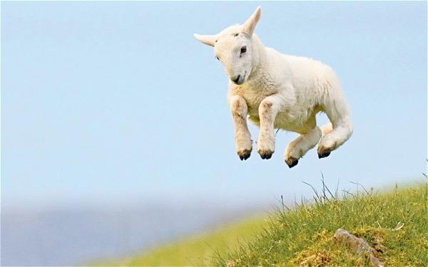 SAVE THE DATE: A húsvét kitolva jó