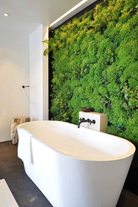 bathroom-living-wall.jpg