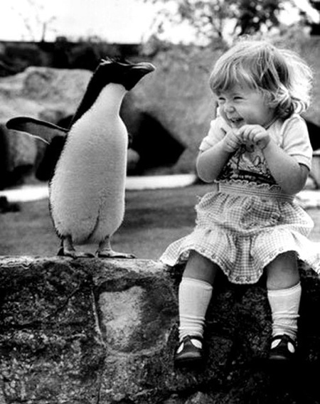 A pingvin boldog tulajdonosa