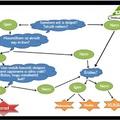 A lomtalanítás előnyei, menete, illetve a lomtalanítás során felmerülő kifogások