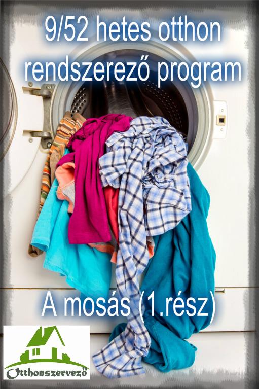 mosas1.jpg