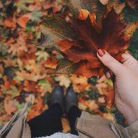 Nagy őszi villaszemle