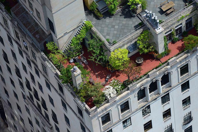 A Nagy Alma legmenőbb tetőkertjei