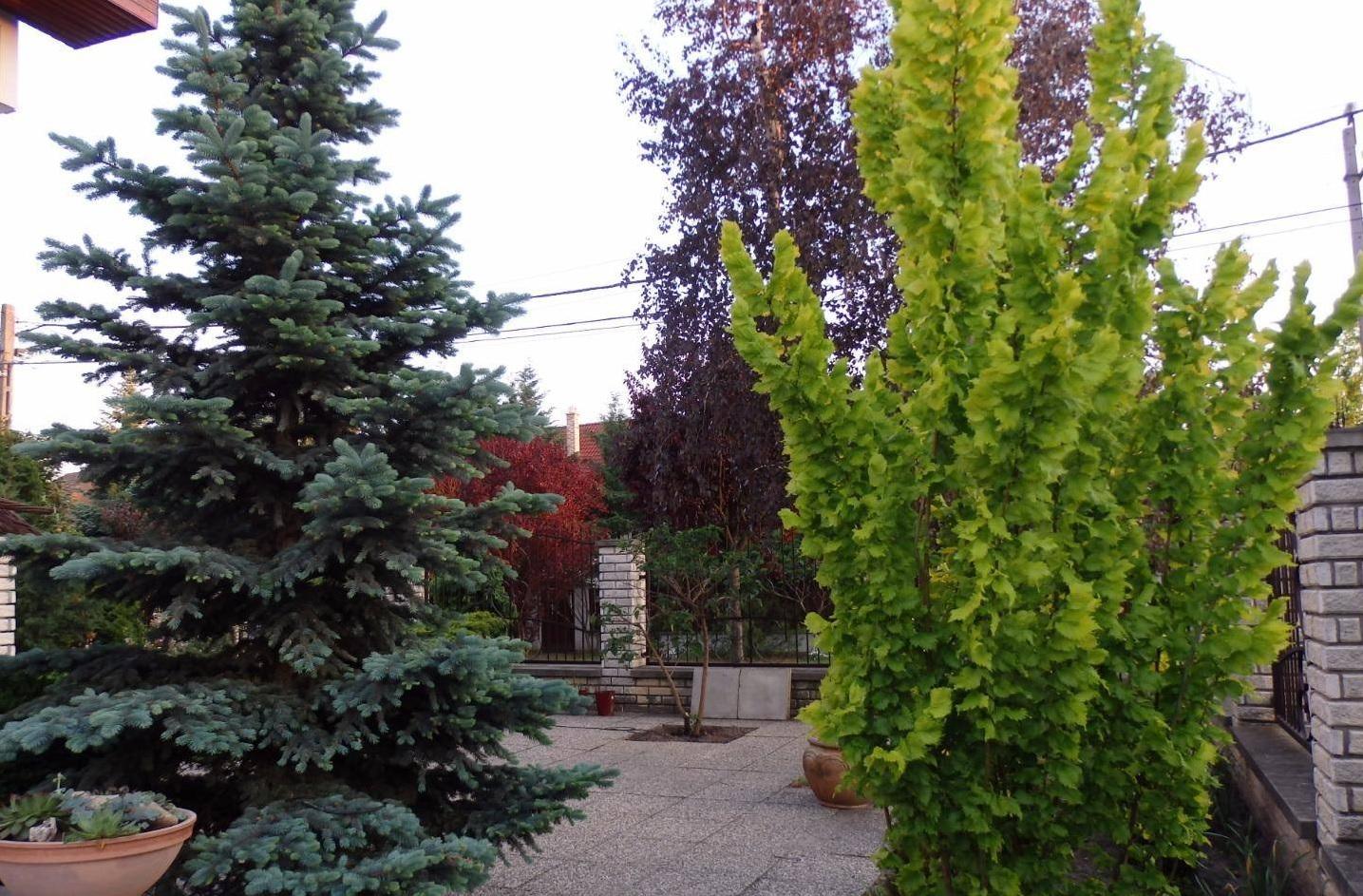 Egy igazán élhető otthon a Dunakanyar kapujában