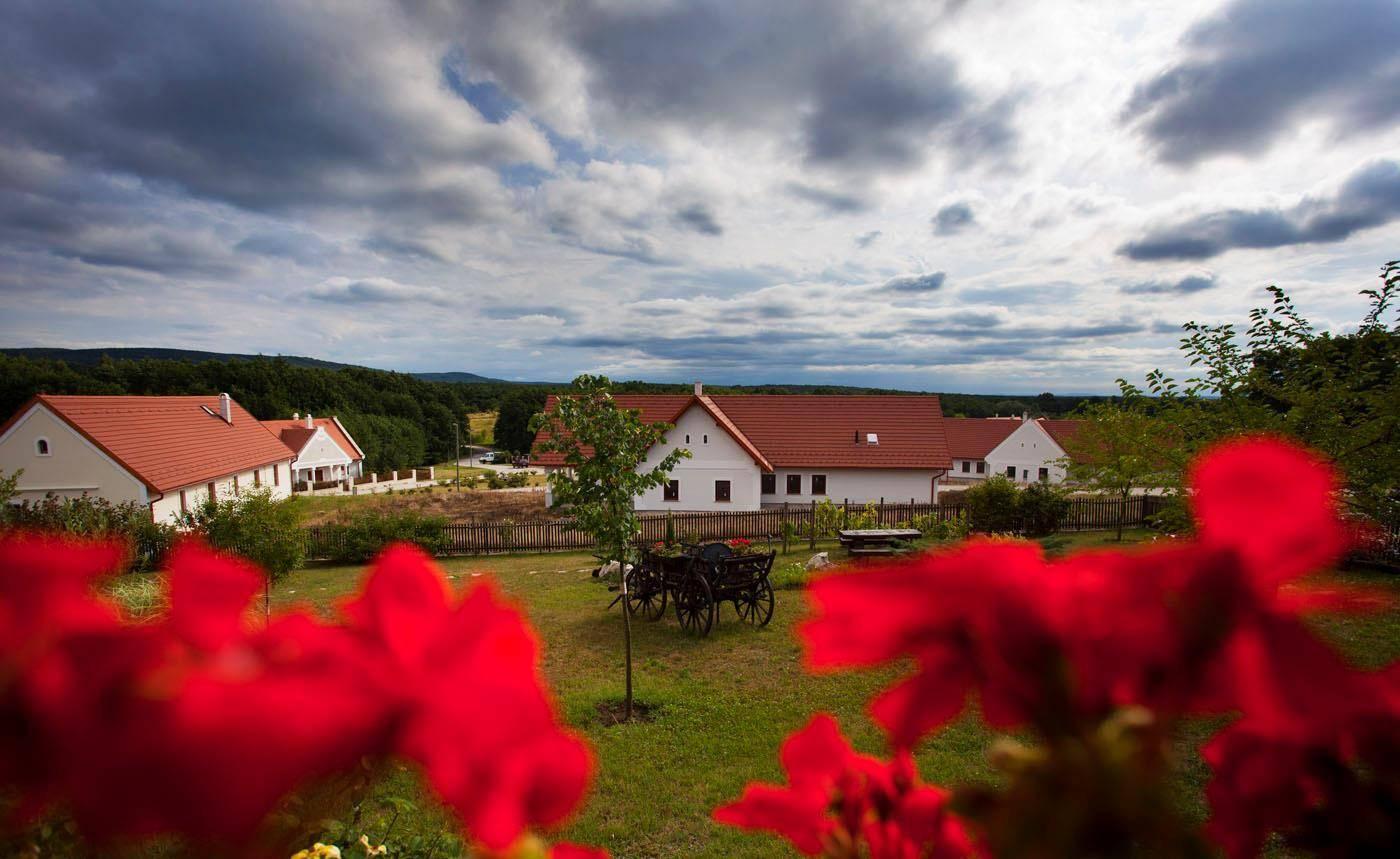Otthon a Vértesben, ahol a nyugalom jelenti a luxust