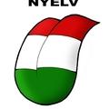 Pár gondolat a magyar szóhasználatról