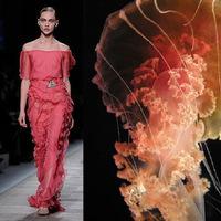 Valentinot valóban a medúzák inspirálták...
