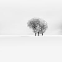 A tél igazi arca