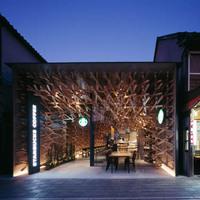 Érdekes Starbucks Beltér Japánban - Kengo Kuma