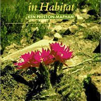 Cacti And Succulents In Habitat Ken Preston-Mafham