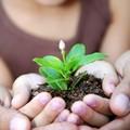 Az óvodás gyerekek gondolkodásáról - gyermeki gondolkodás
