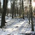 Óvodásaim kedvenc téli, januári versei