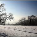 Decemberi tarisznya: Téli versek gyerekeknek