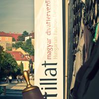 Életillat – magyar divattervezők boltja