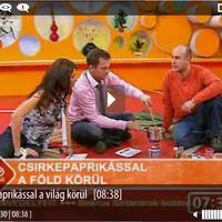 RTL KLUB / Reggeli