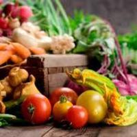 A paleolit diéta és a köszvény