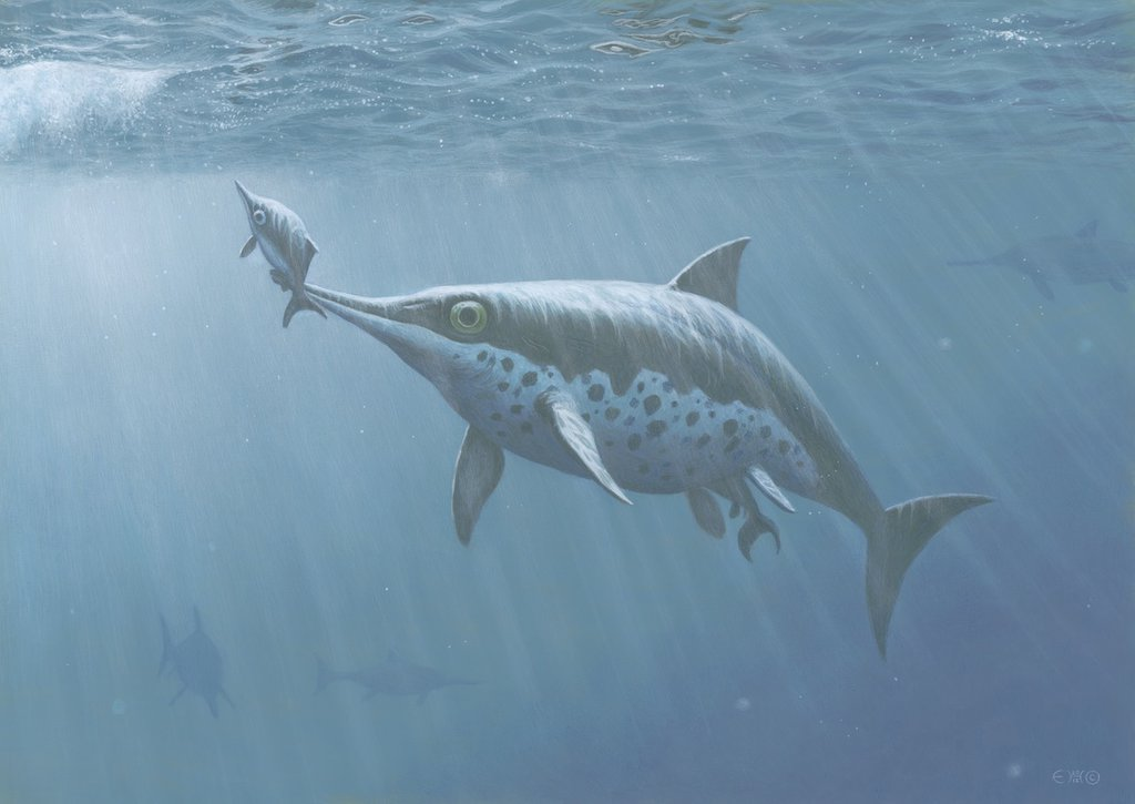ichthyosaur_birth_by_esthervanhulsen-d6iia0u.jpg