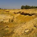 Egy ősmaradvány-lelőhely felemelkedése és bukása