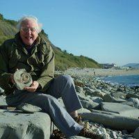 Boldog születésnapot, Sir David Attenborough!