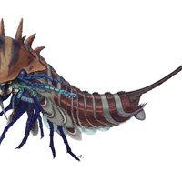Új eredmények a Burgess fauna egy rejtélyes tagjával kapcsolatban