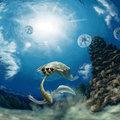 Több száz millió éve jelenhetett meg először a szülői gondviselés