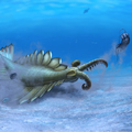 Fejlettek lehettek az első ragadozók kicsinyei