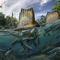 A Spinosaurus rokona is kedvelhette a víz közelségét