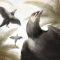 Izgalmas eredmények a legújabb Archaeopteryx lelet kapcsán