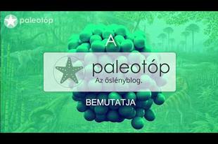 Rövid videó a Balatonitesről