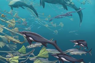 Még hatalmasabbak lehettek a legnagyobb ichthyoszauruszok