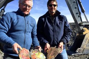 Drágakövek helyett tengeri őshüllő csontjaira bukkantak