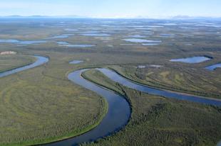 Csontropogtató hiénák éltek Kanadában a jégkorszak idején