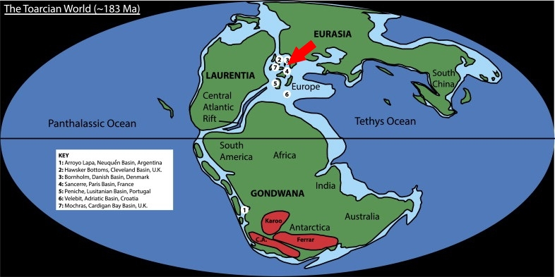a-palaeogeographic-reconstruction-of-the-early-toarcian-world-the-locations-of-the-seven.jpg
