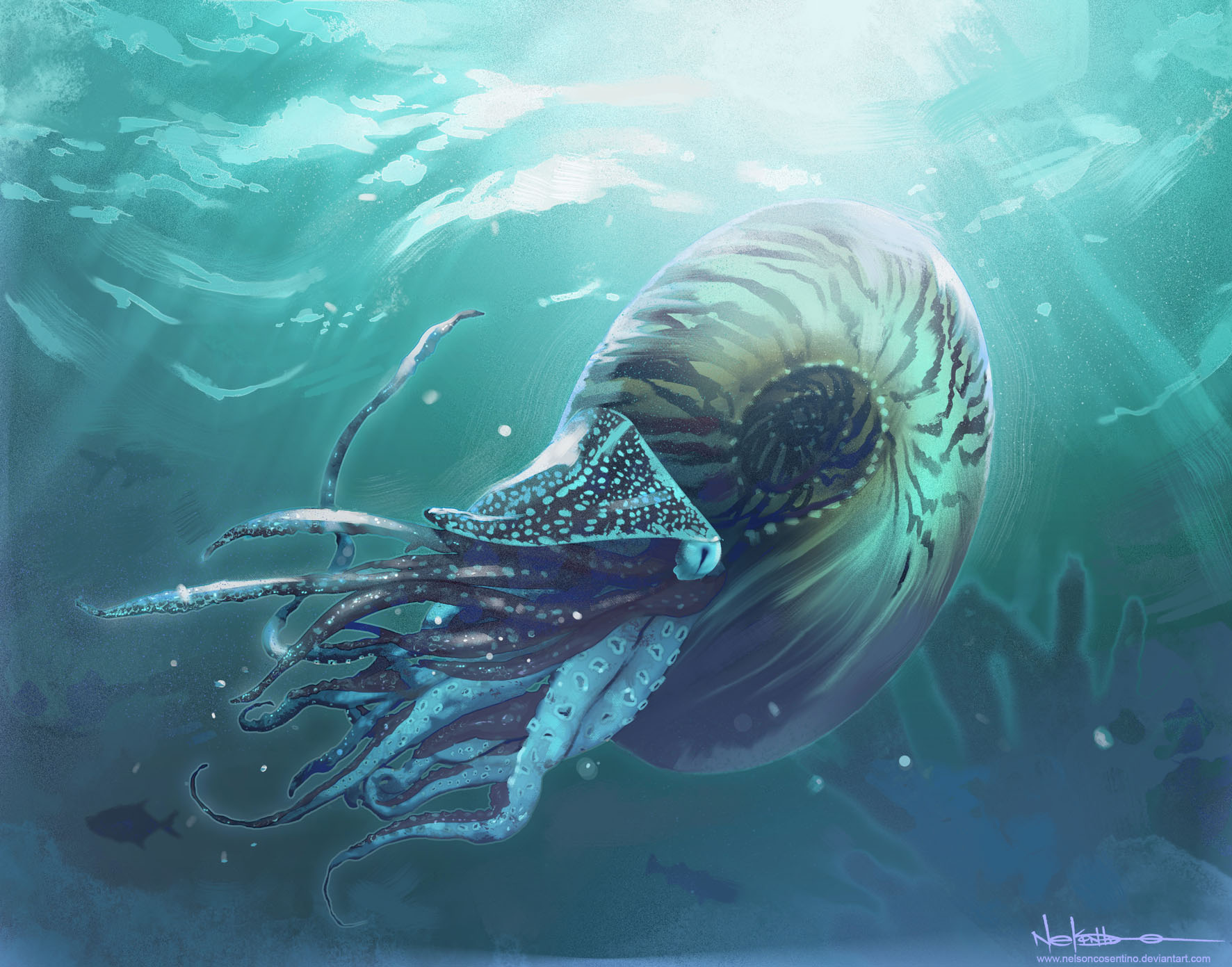 ammonite_by_nelsoncosentino-d5q6azp.jpg