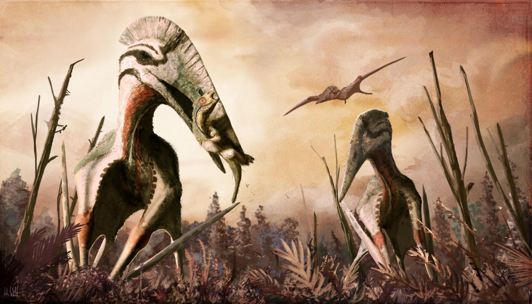 hatzegopteryx.png