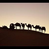 Marokkó 2018 - Videó