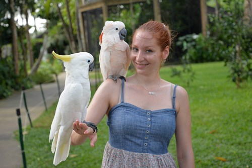 bali_bird_park_20.JPG