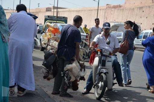 marrakesh_86.JPG