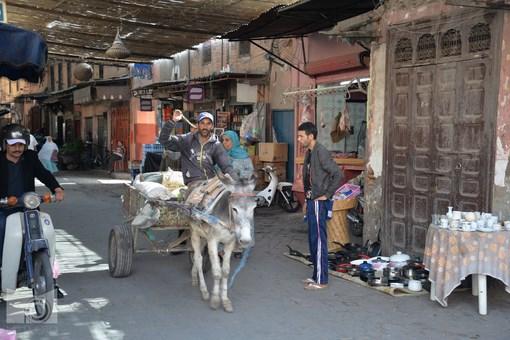 marrakesh_95.JPG
