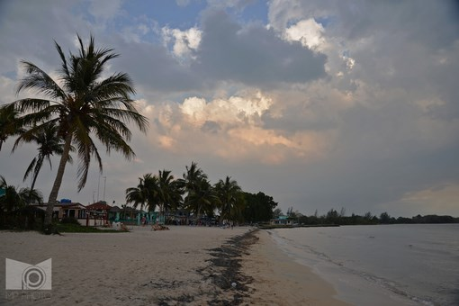 playa_larga_15.JPG