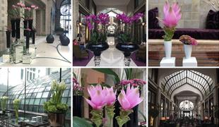A Four Seasons Hotel virágcsodái