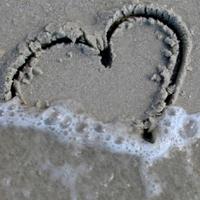 Szerelem a betonban