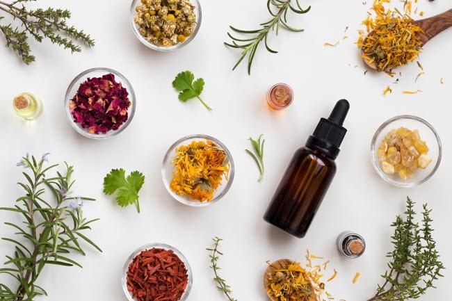 herbalism-for-beginners-5-herbs-to-get-you-started.jpg