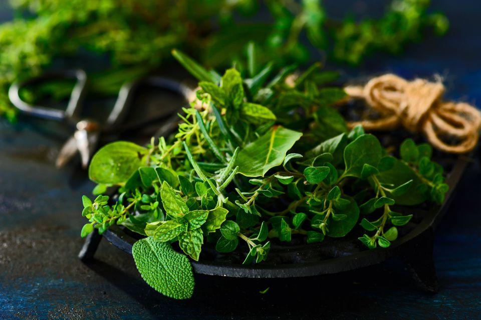 various-fresh-herbs-907728974-cc6c2be53aac46de9e6a4b47a0e630e4.jpg