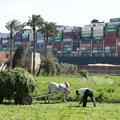 Megbénult leviatán - hajóóriások és világkereskedelem a Szuezi-csatornán