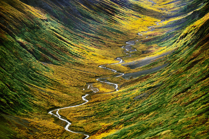 20140227beringia-illusztracio-tundra-alaszka.jpg