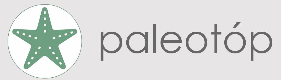 paleotop.JPG